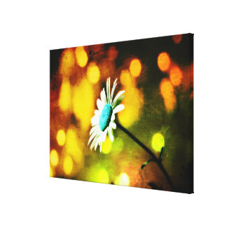 Turquoise Daisy in Gold Wrapped Canvas Print