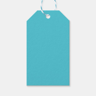 Turquoise Pack Of Gift Tags