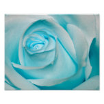 Turquoise Ice Rose Print