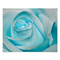 Turquoise Ice Rose Poster