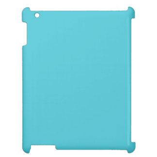 Turquoise Case For The iPad 2 3 4