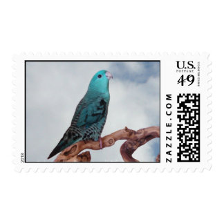 Turquoise linnie postage stamps