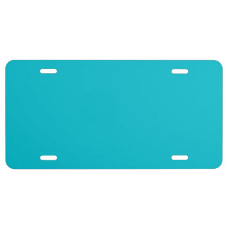 """""""Turquoise"""" License Plate"""