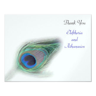 turquoise peacock Thank You Card
