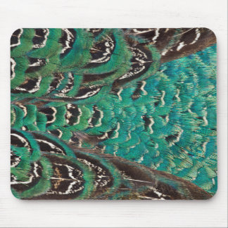 Turquoise Pheasant Feather Detail Mouse Pad