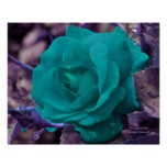 Turquoise Rose Flower Photography Poster Print