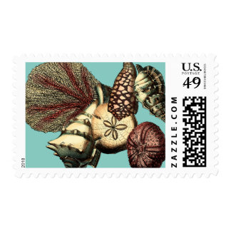 Turquoise Shell and Red Coral Collection Postage