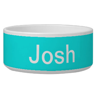 Turquoise Solid Color Bowl