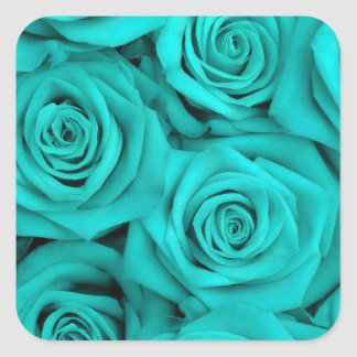 Turquoise Spectacular Roses Square Sticker