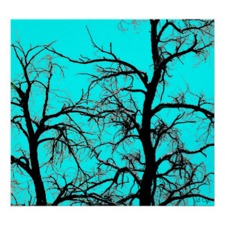 Turquoise Square, S Cyr Poster