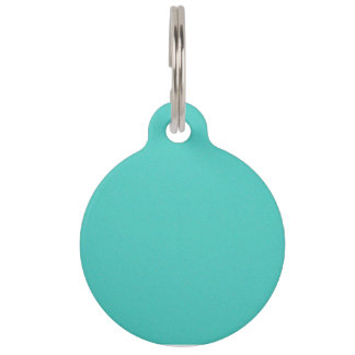 Turquoise Star Dust Pet Name Tag