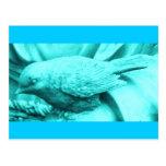 Turquoise Statuary Bird Postcard