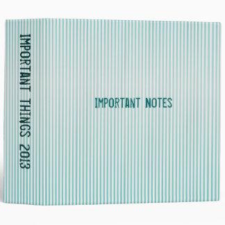 Turquoise  stripe binder