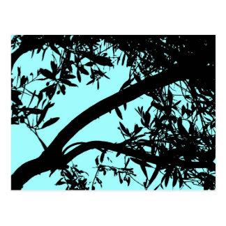 Turquoise Tree Postcard