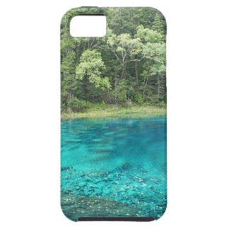 Turquoise Water iPhone SE/5/5s Case