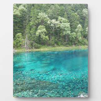 Turquoise Water Plaque