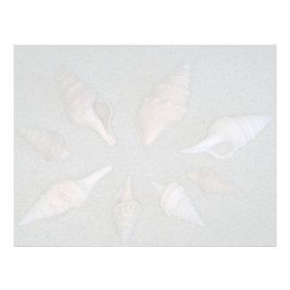 Turrids Shell Membrete Personalizado