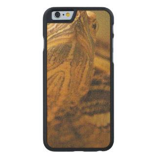 turtle-17.jpg funda de iPhone 6 carved® de arce