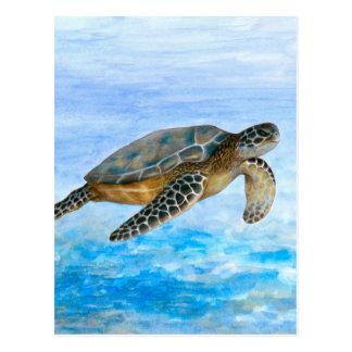 Turtle 1 postcard