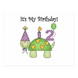Turtle 2nd Birthday Tshirts and Gifts Postcard