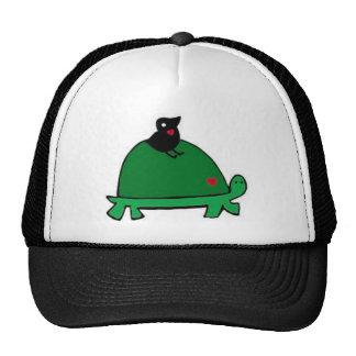 turtle <3 bird <3 trucker hat