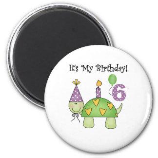 Turtle 6th Birthday Magnet