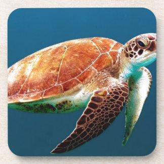 turtle-863 beverage coaster
