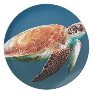 turtle-863 plate