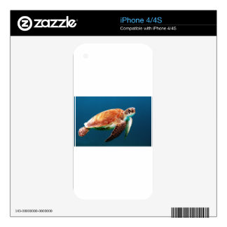 turtle-863 skin for iPhone 4S