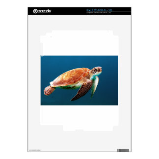 turtle-863 skins for the iPad 2