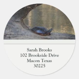 Turtle Address Labels Classic Round Sticker