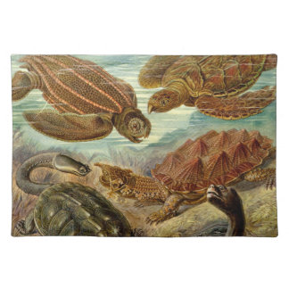Turtle American MoJo Placemat