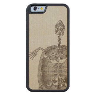 Turtle Anatomy Wooden iPhone Case Resized Carved® Maple iPhone 6 Bumper