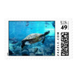 Turtle and fish stamps