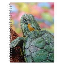 Turtle Animal Notebook
