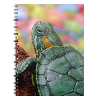 Turtle Animal Note Books