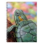 Turtle Animal Spiral Notebooks