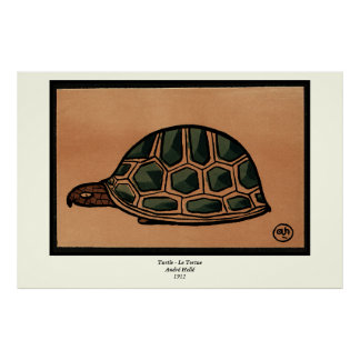 Turtle - Antiquarian, Colorful Book Illustration Poster