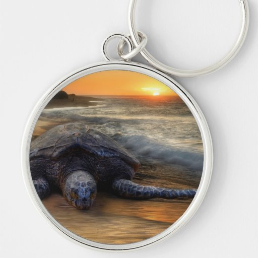 Turtle at Sunset Key Chain