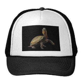 Turtle Attitude Trucker Hat