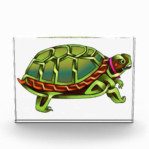 Turtle Awards
