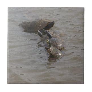 Turtle Babies and Mama Ceramic Tile