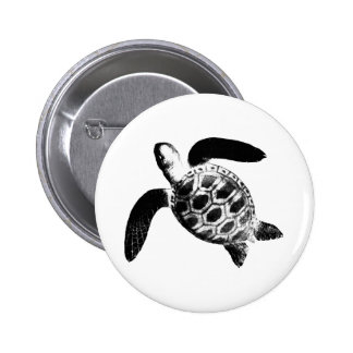 Turtle Black The MUSEUM Zazzle Gifts Pinback Buttons