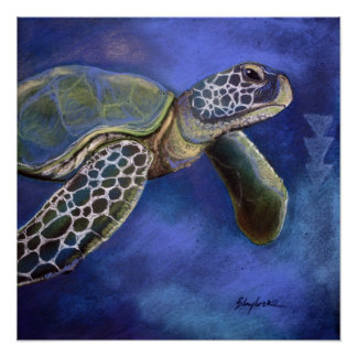 Turtle Blues Poster