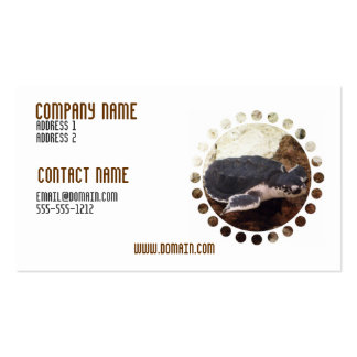 Turtle Business Card