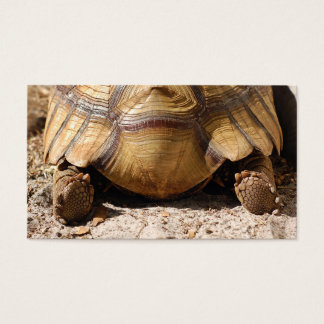Turtle Butt Bookmark & Gift Tags