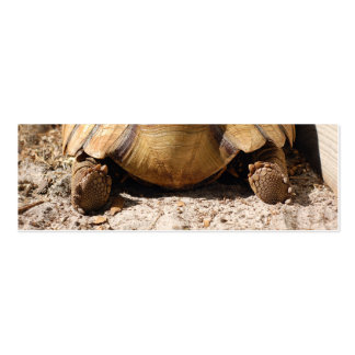 Turtle Butt Bookmark Gift Tags Business Card