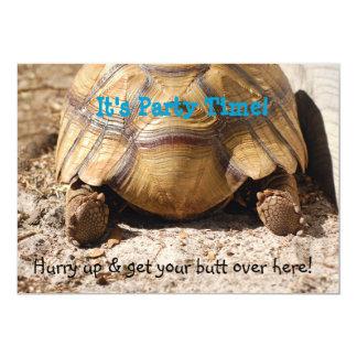 Turtle Butt Design Card