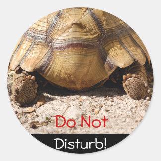 Turtle Butt Design Classic Round Sticker
