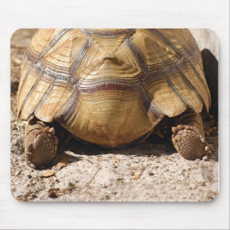 Turtle Butt Design Mouse Pad